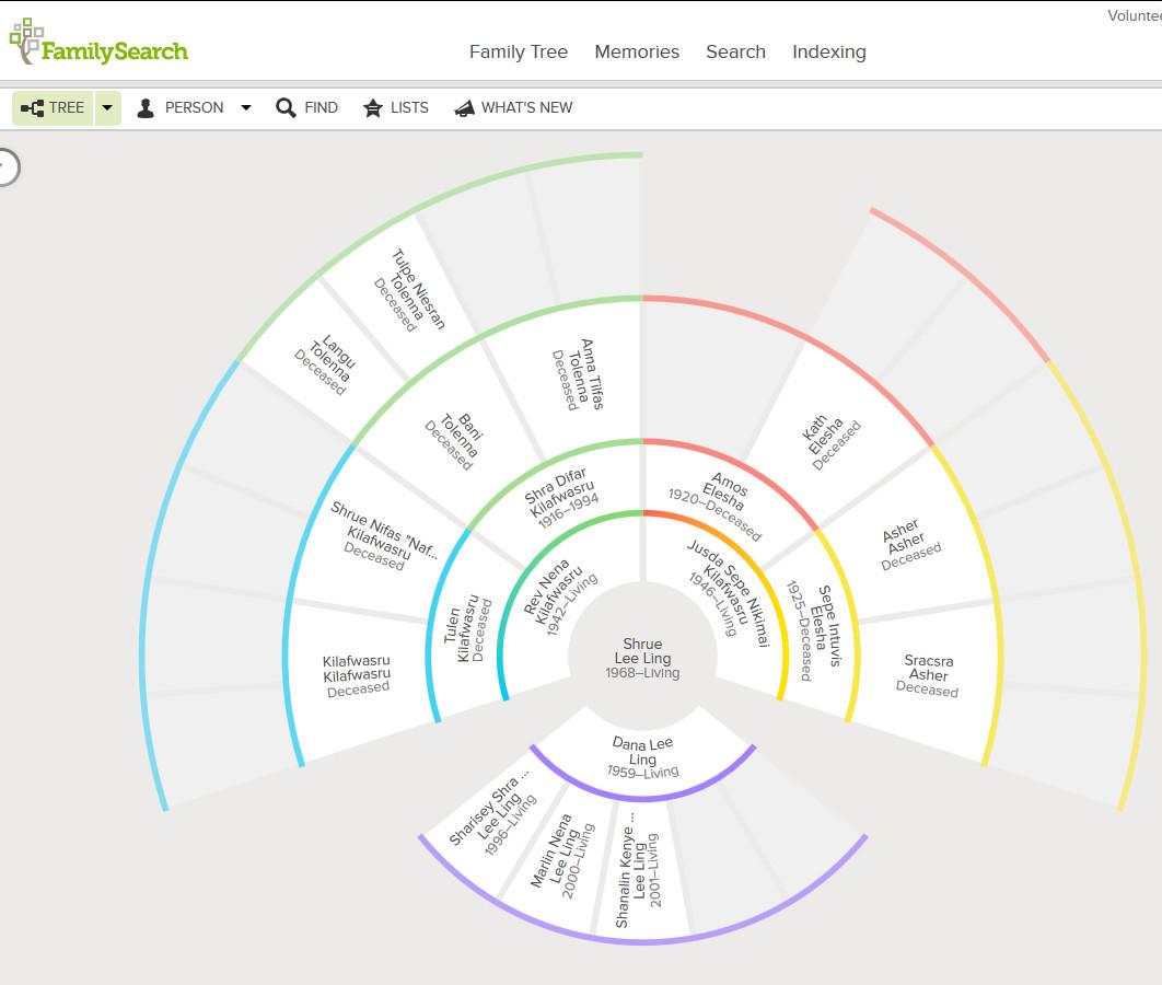 genealogy fan chart excel
