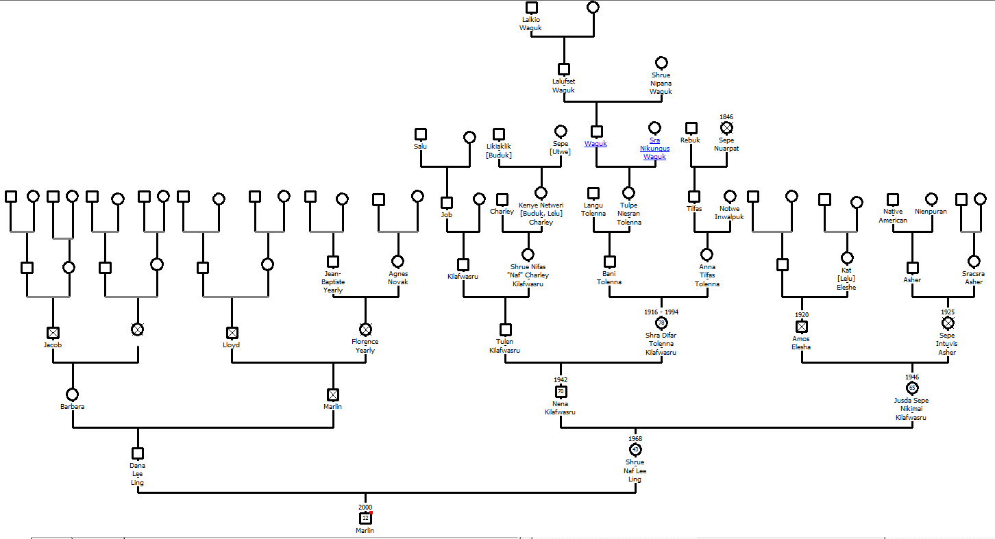 geneogram A genogram may simply refer to a household map or a track record that makes use of unique emblems to explain human relationships, any main occasions as well as characteristics of your loved ones for an extensive period of time.