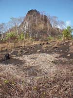Pohnpei 98