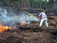 Beating with fire with a rake